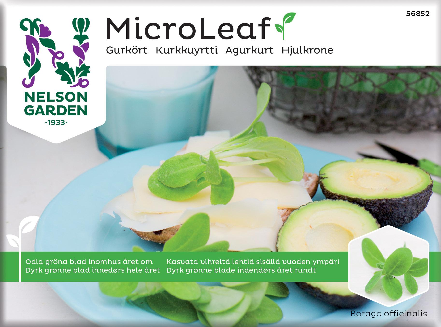 Produktbild på Micro Leaf Gurkört