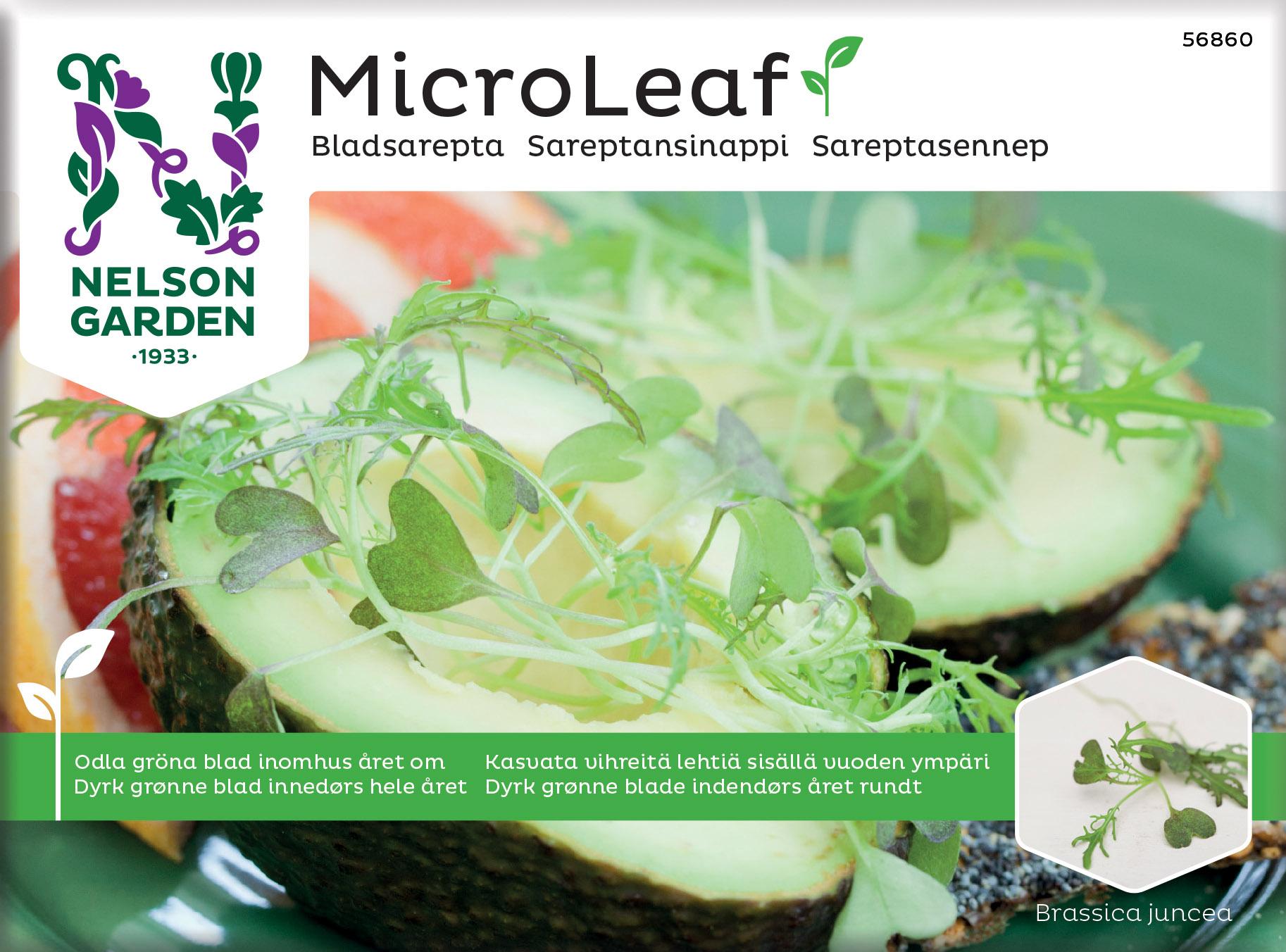 Produktbild på Micro Leaf Bladsarepta 'Red Frills'