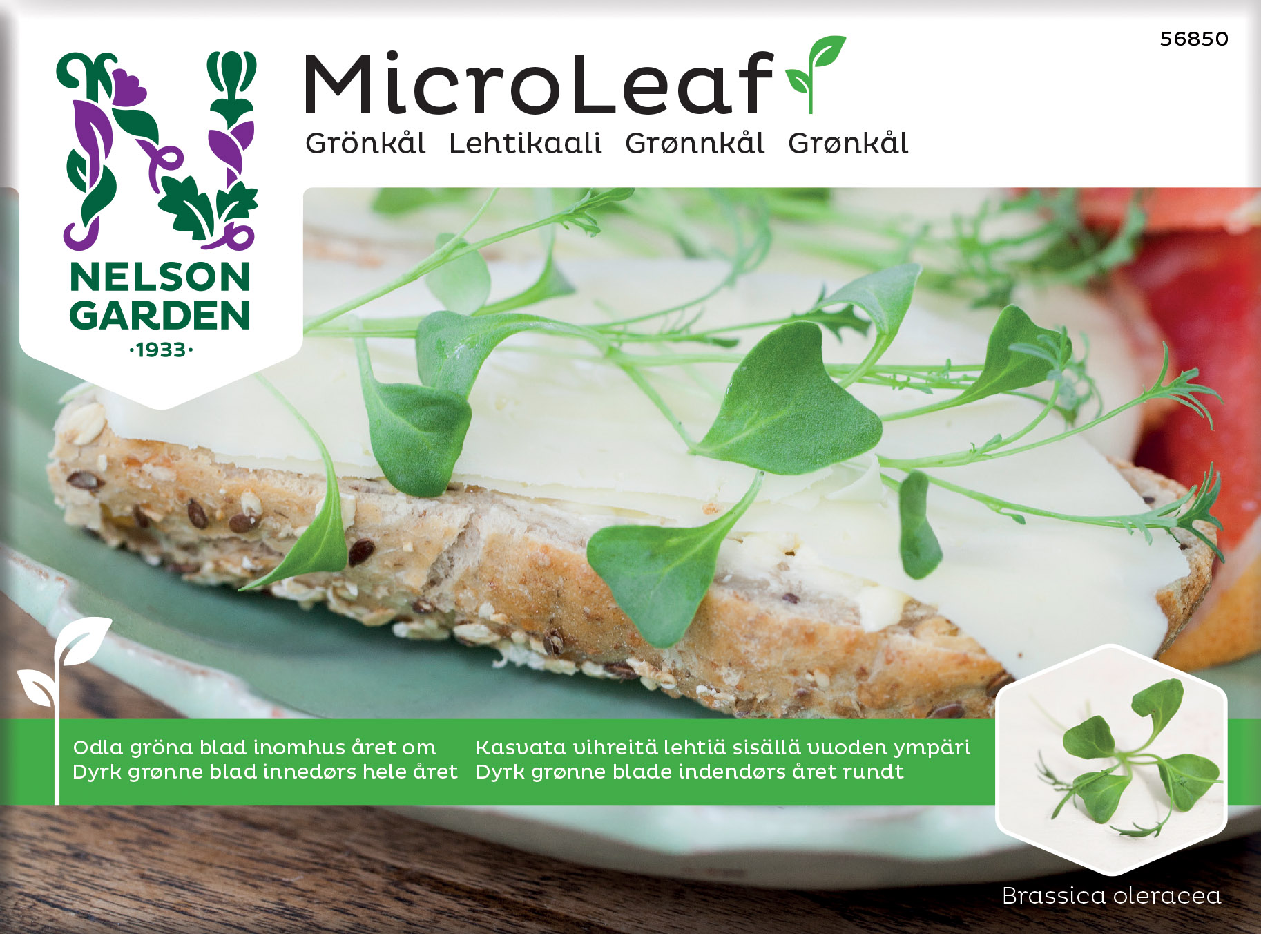 Produktbild på Micro Leaf Grönkål 'Jagallo Nero'