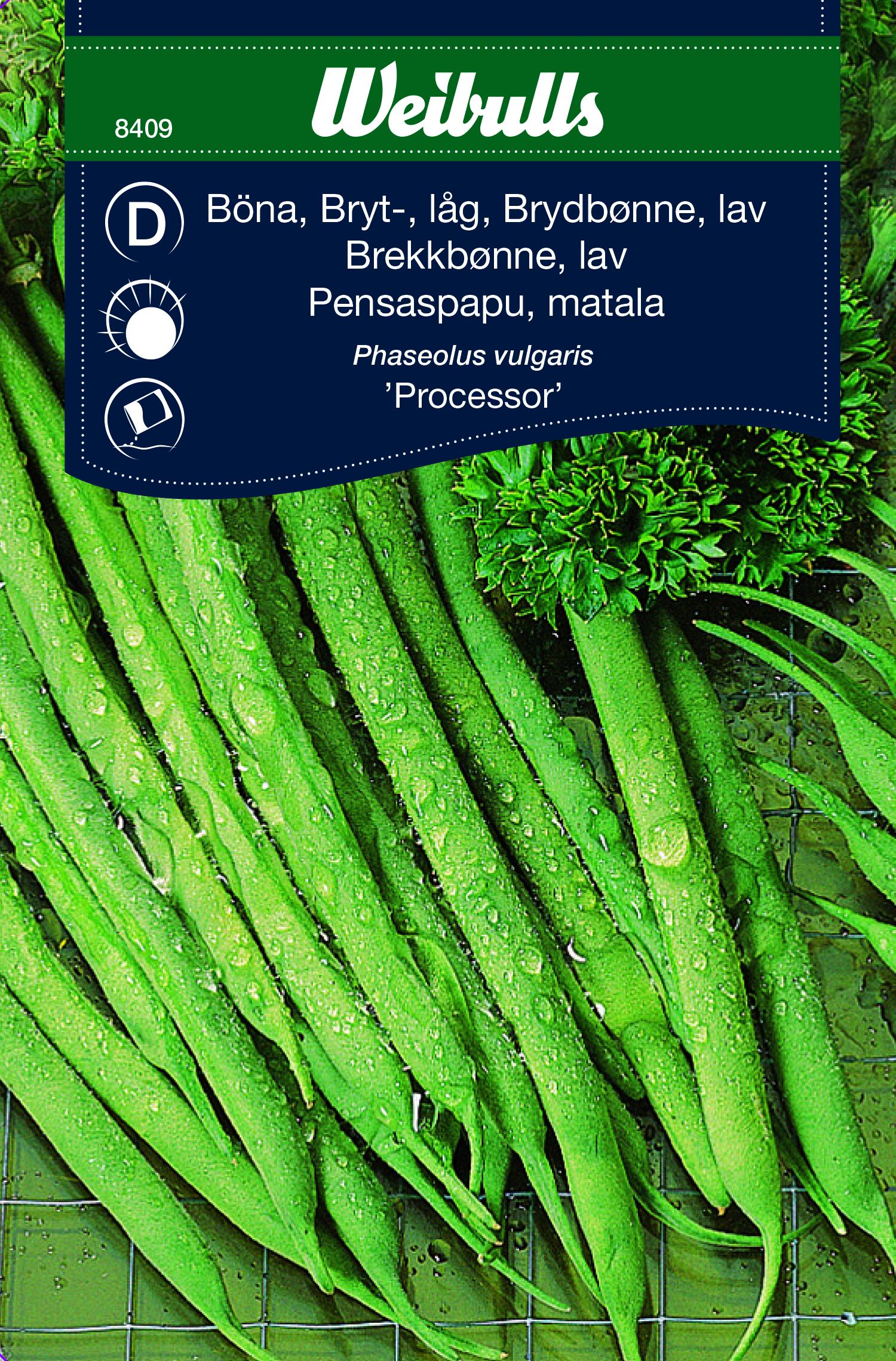 Produktbild på Brytböna 'Processor'