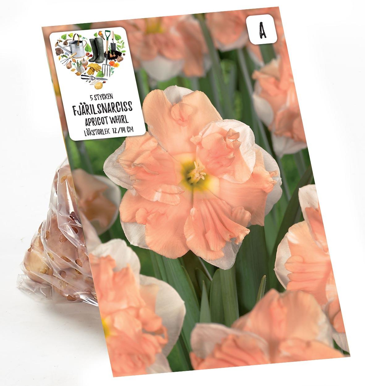 Produktbild på Stjärnnarciss 'Apricot Whirl'