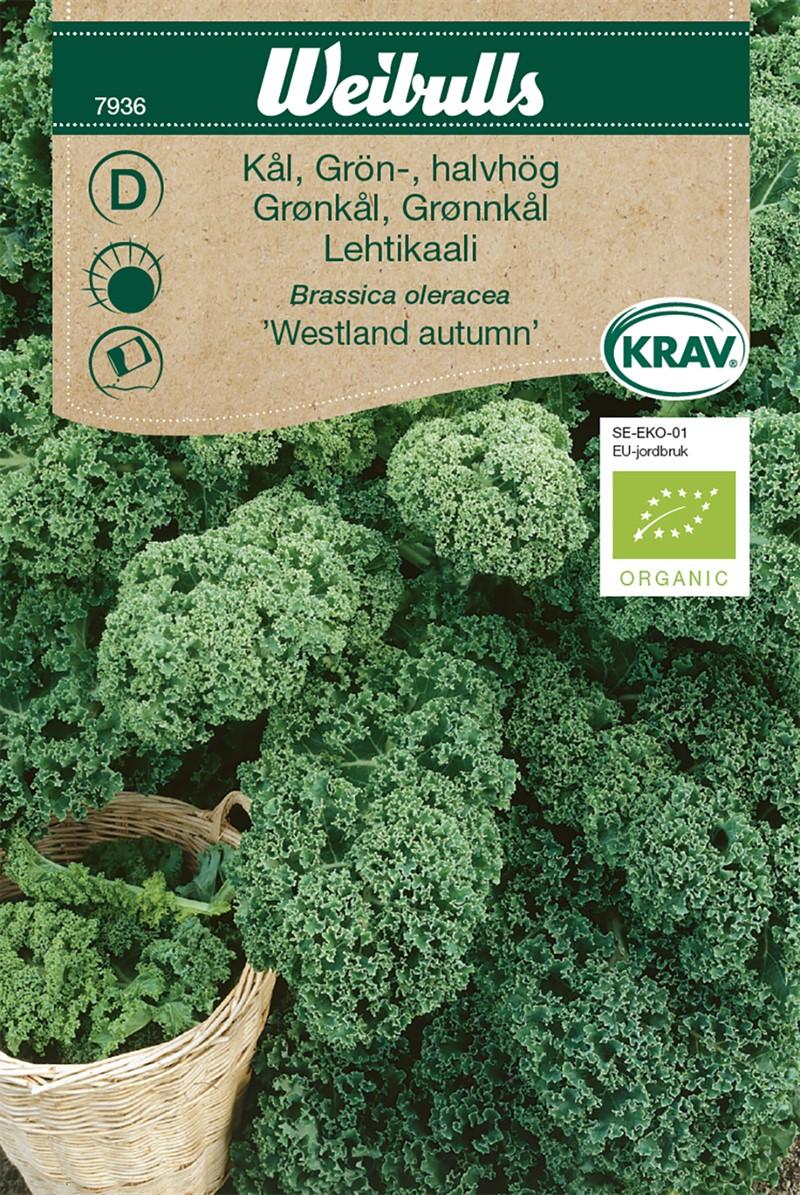 Produktbild på Grönkål 'Westland Autumn'