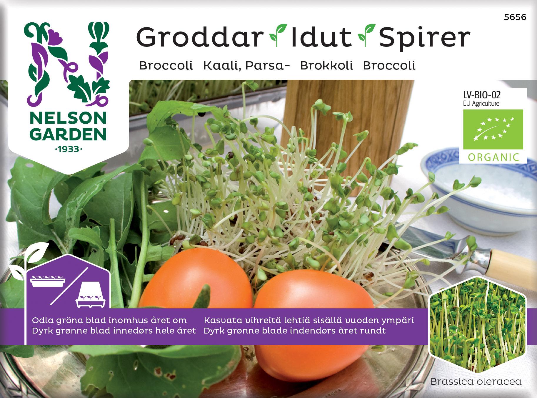 Produktbild på Groddar, Broccoli