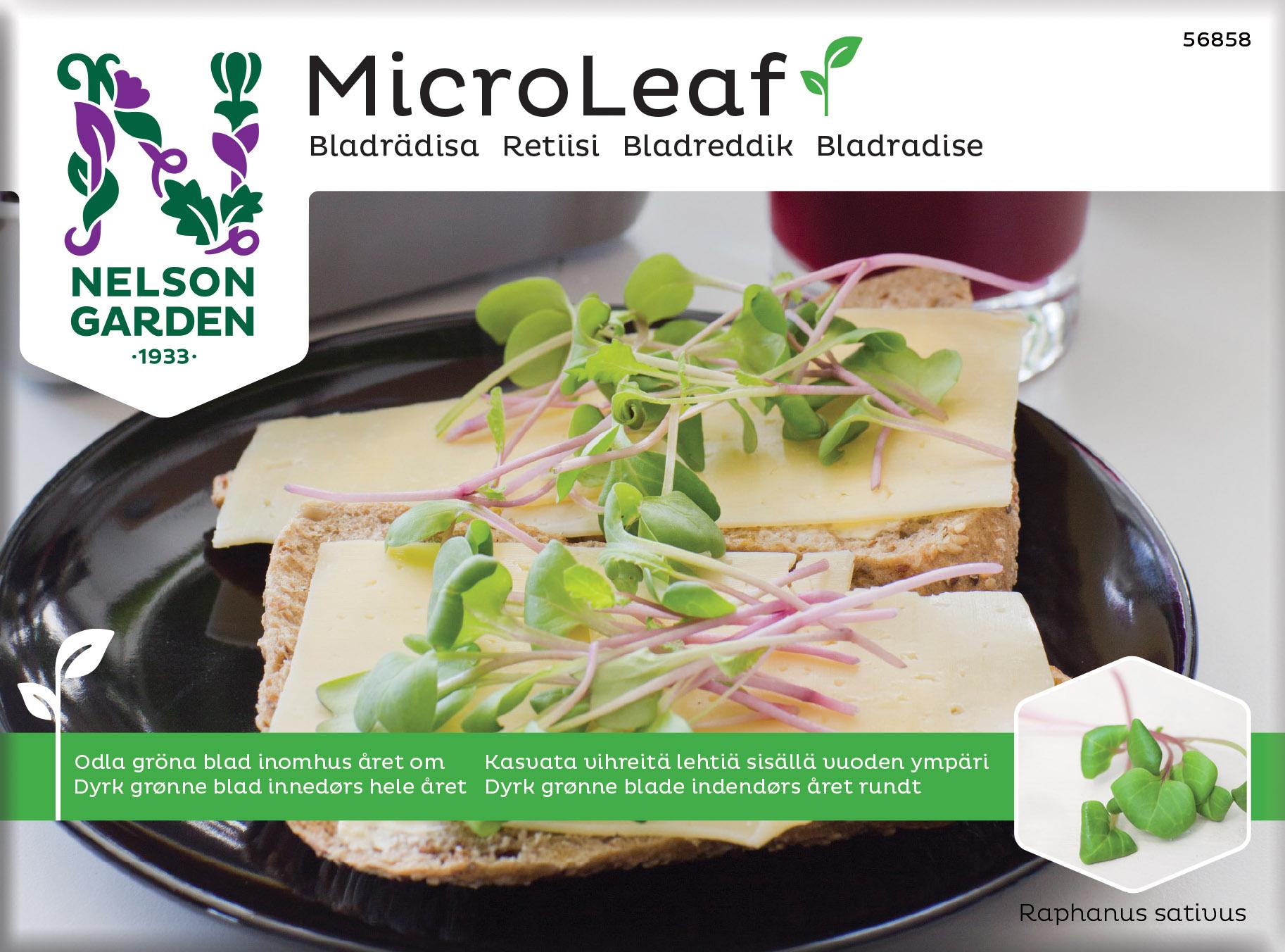 Produktbild på Micro Leaf Bladrädisa 'Sangria'