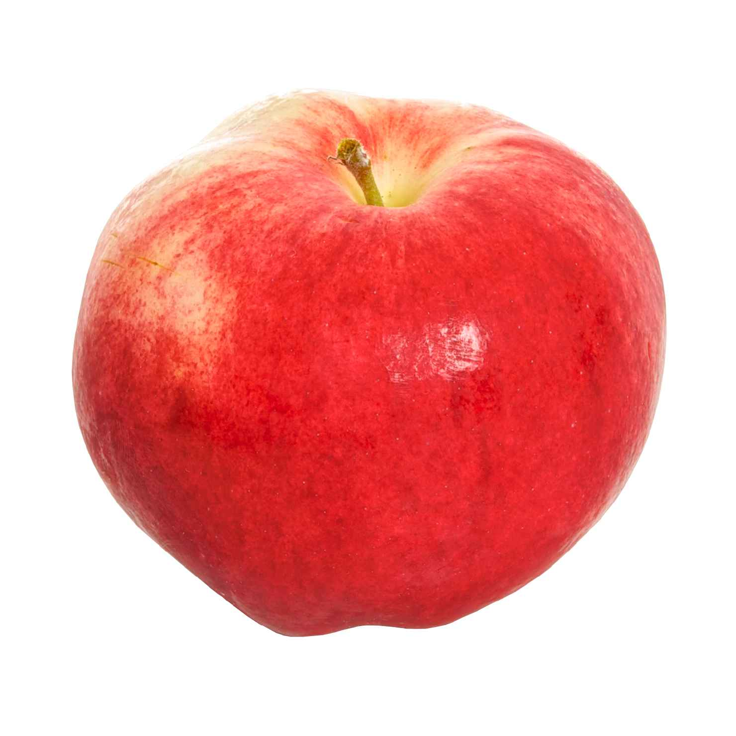 Produktbild på Äppleträd 'Mantet'