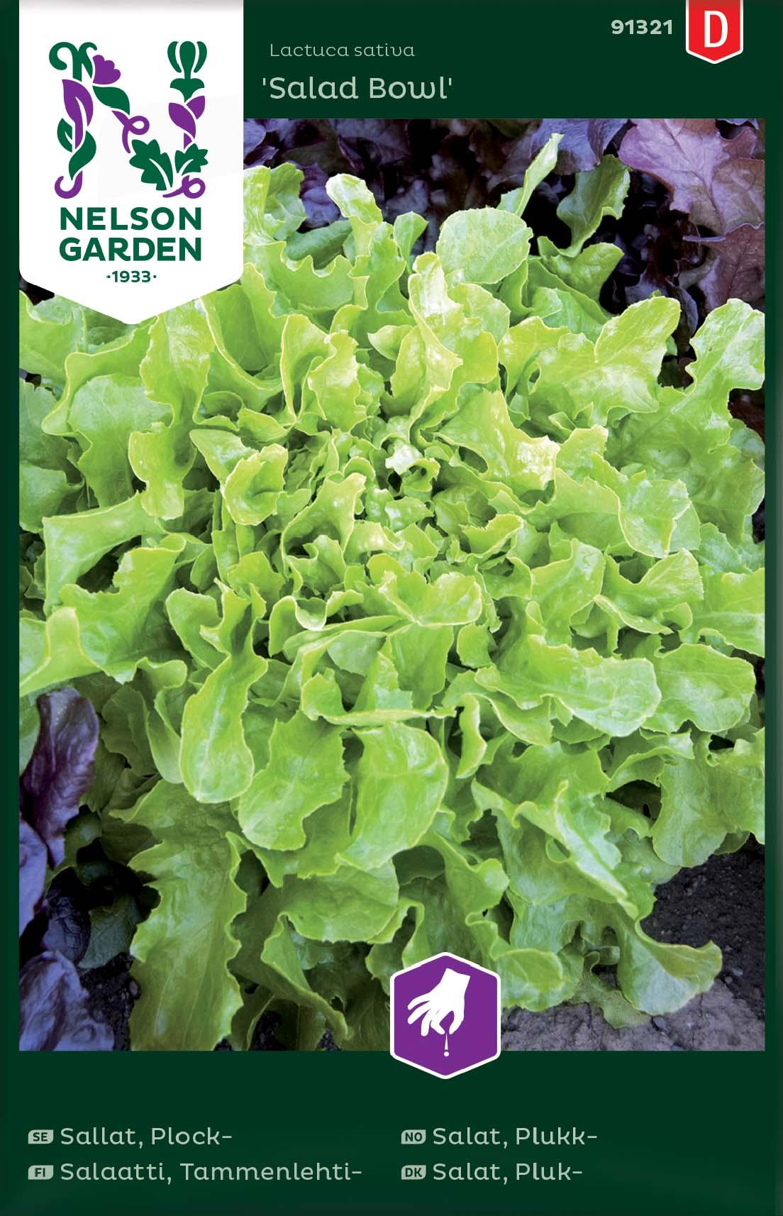 Produktbild på Plocksallat 'Salad Bowl'