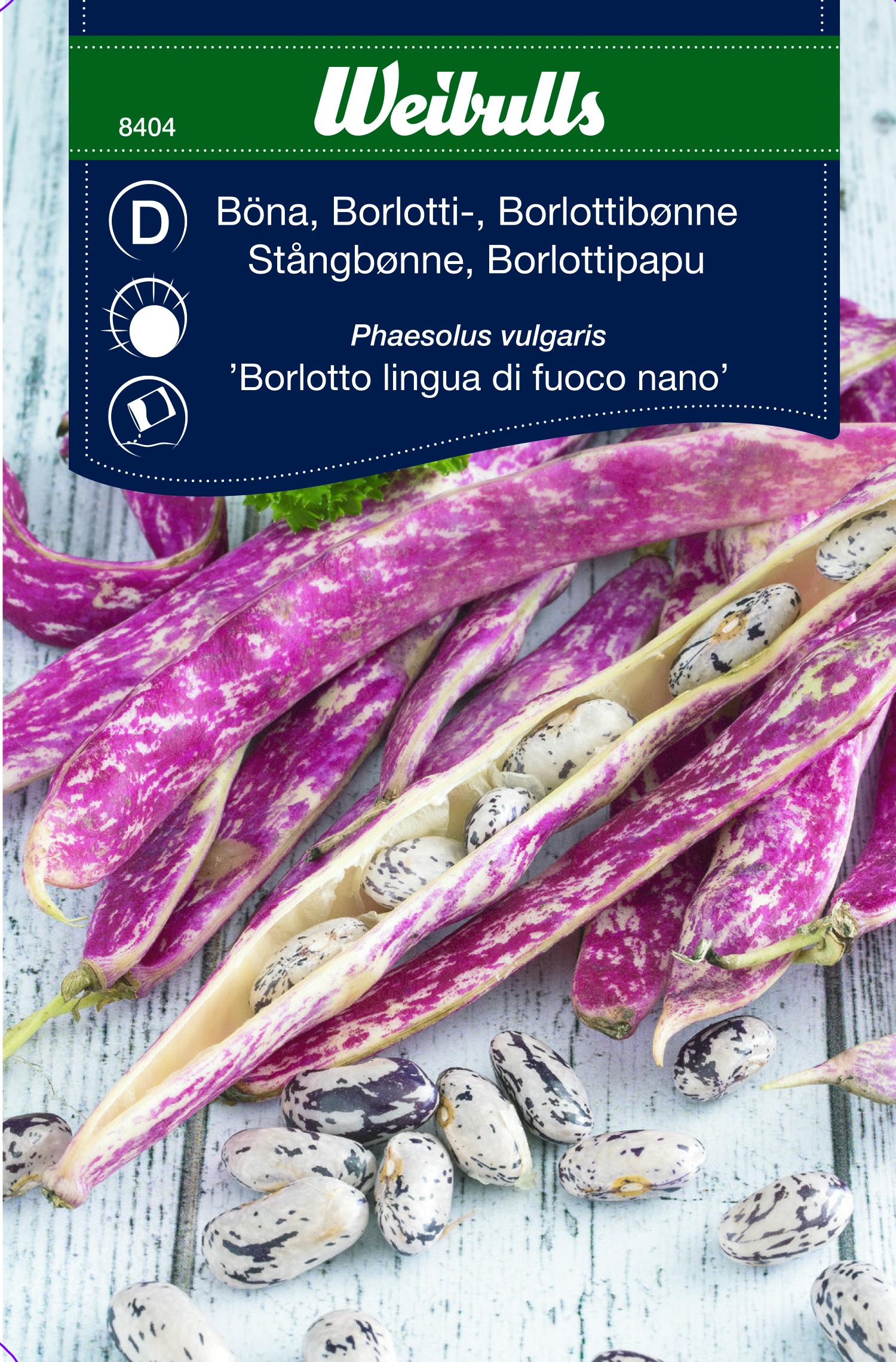 Produktbild på Borlottiböna 'Borlotto Nano'