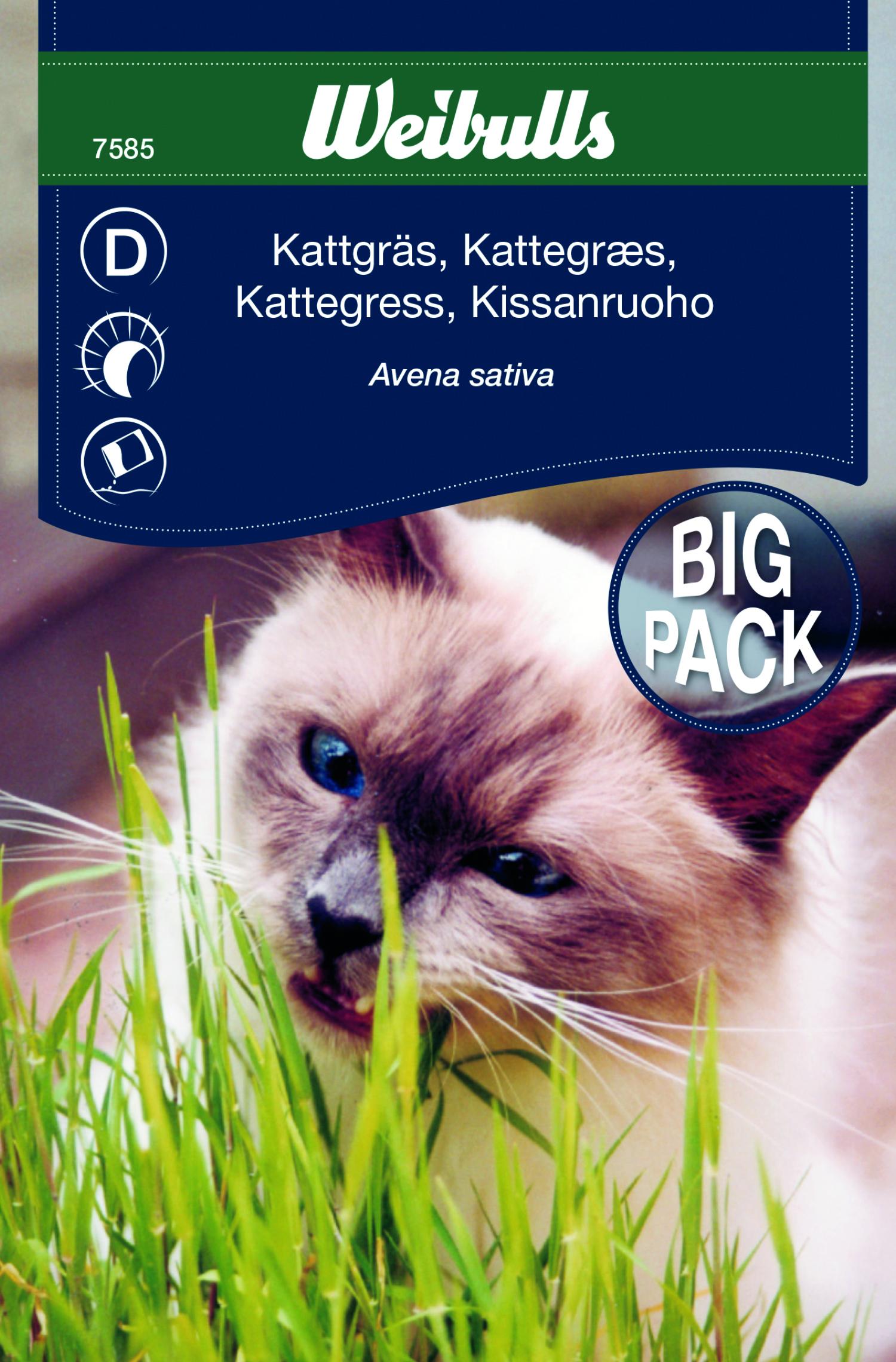 Produktbild på Kattgräs storportion