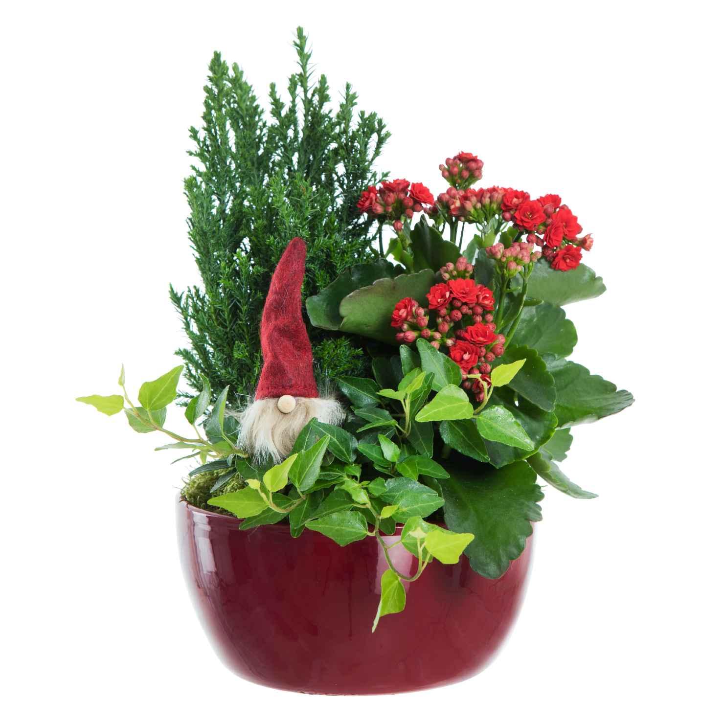 Produktbild på Julgrupp 'Astrid'
