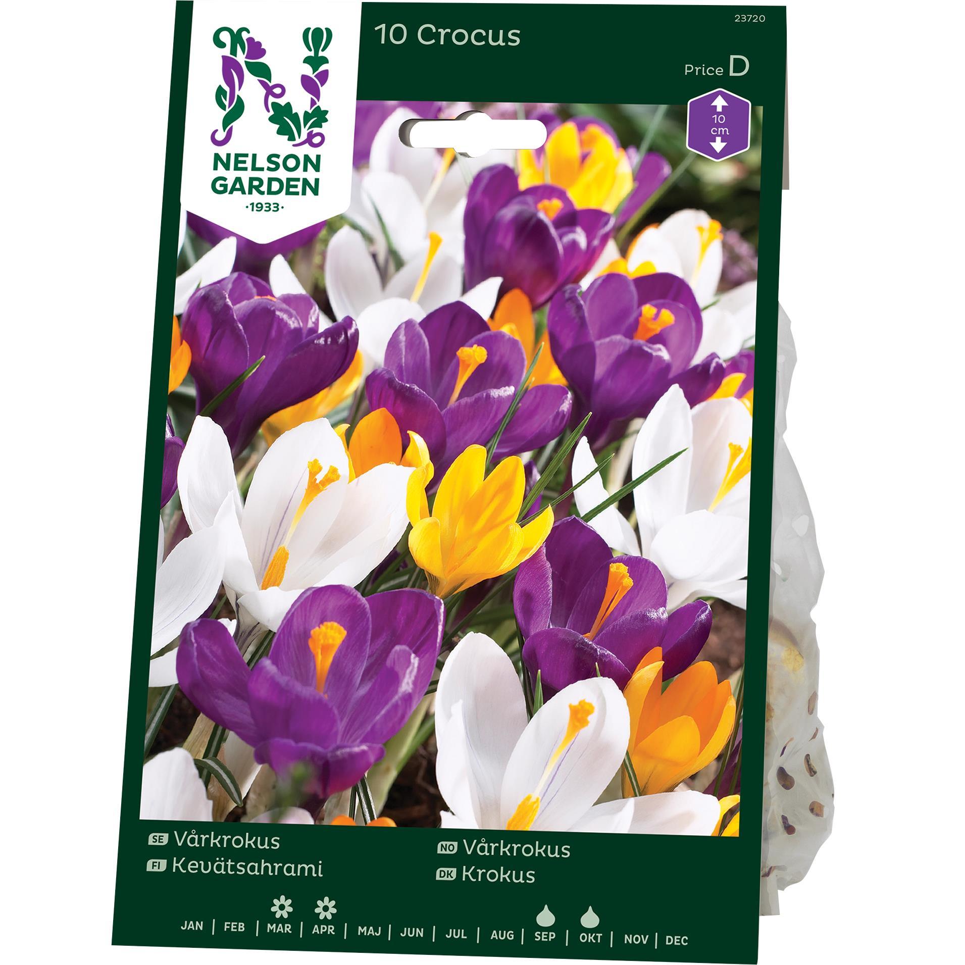 Produktbild på Krokus, Vår, blandade färger