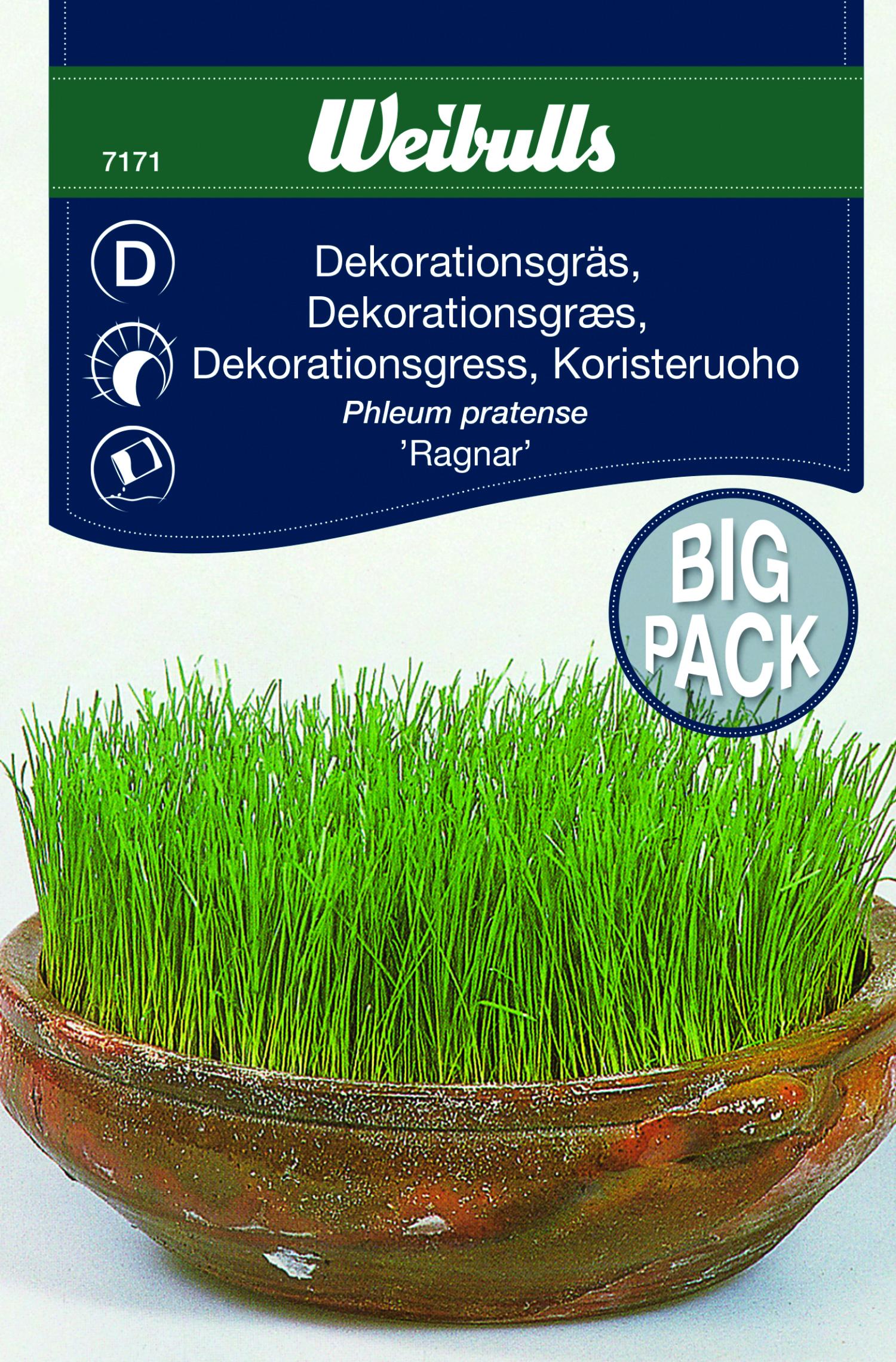 Produktbild på Dekorationsgräs