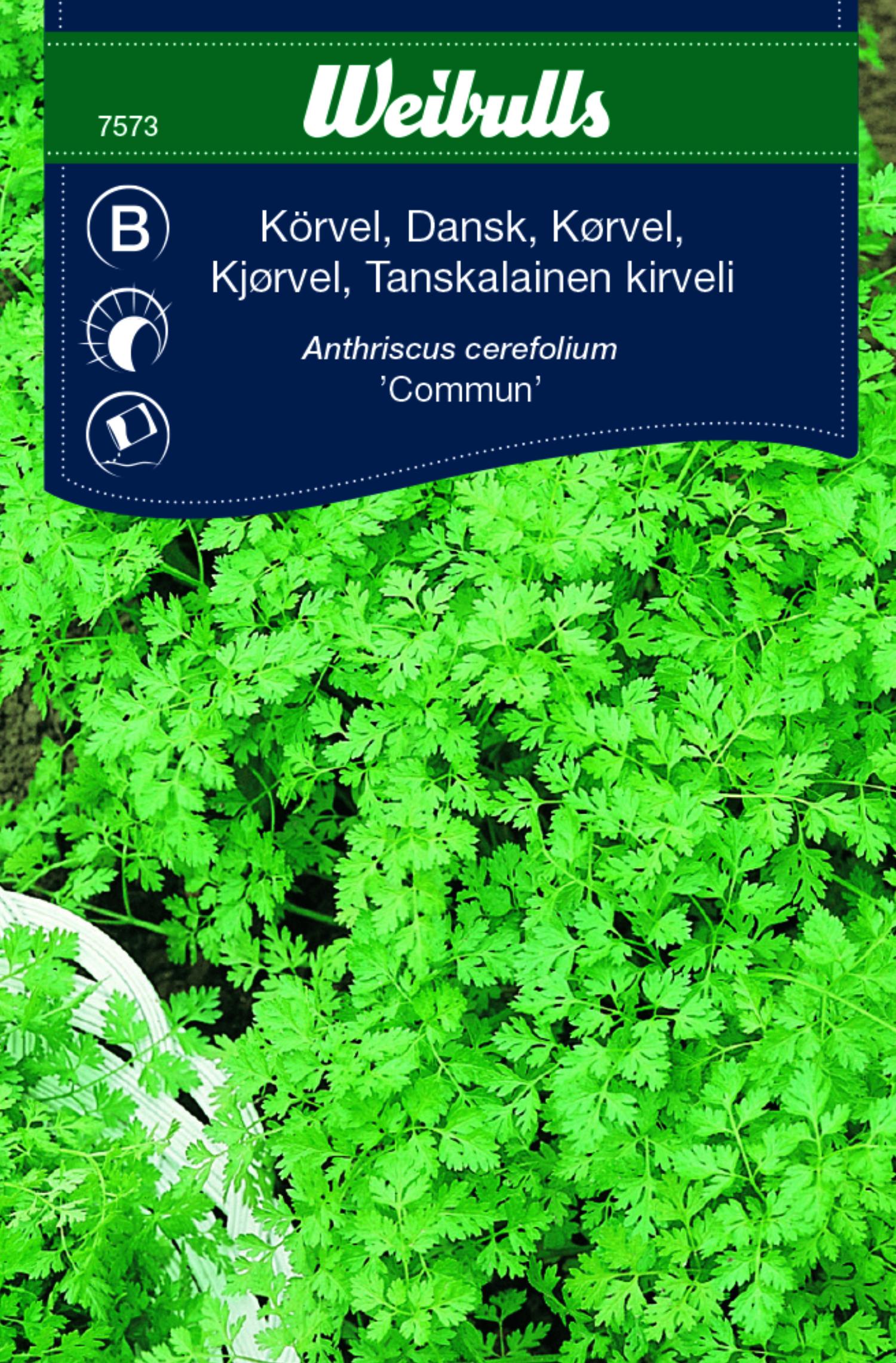 Produktbild på Körvel dansk 'Commun'