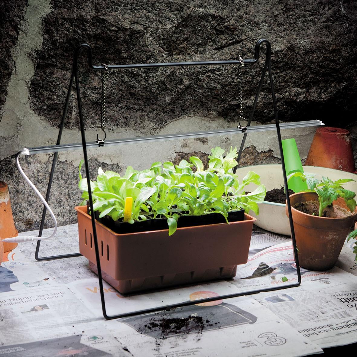 Produktbild 2 på Ställning till växtbelysning