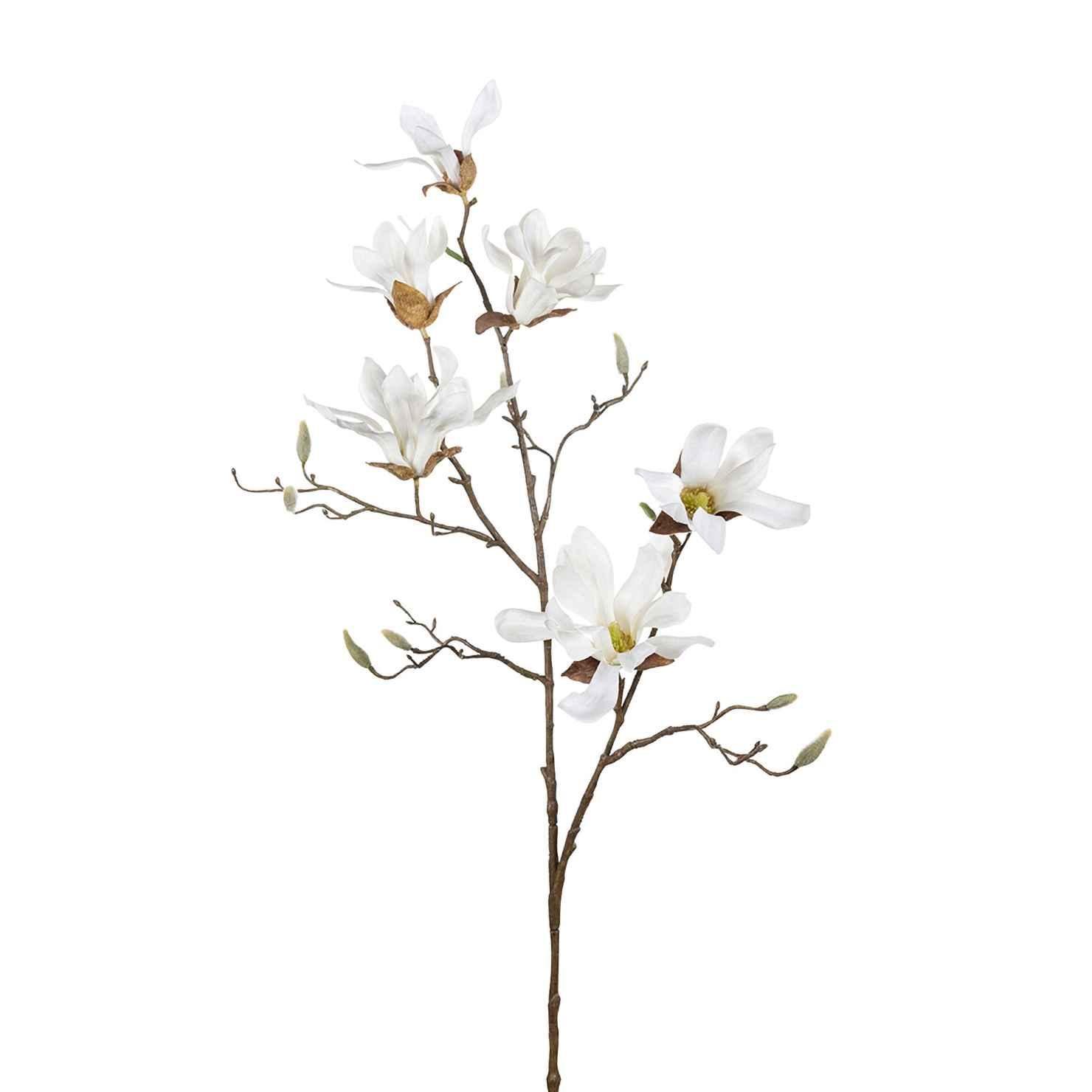 Produktbild på Magnolia
