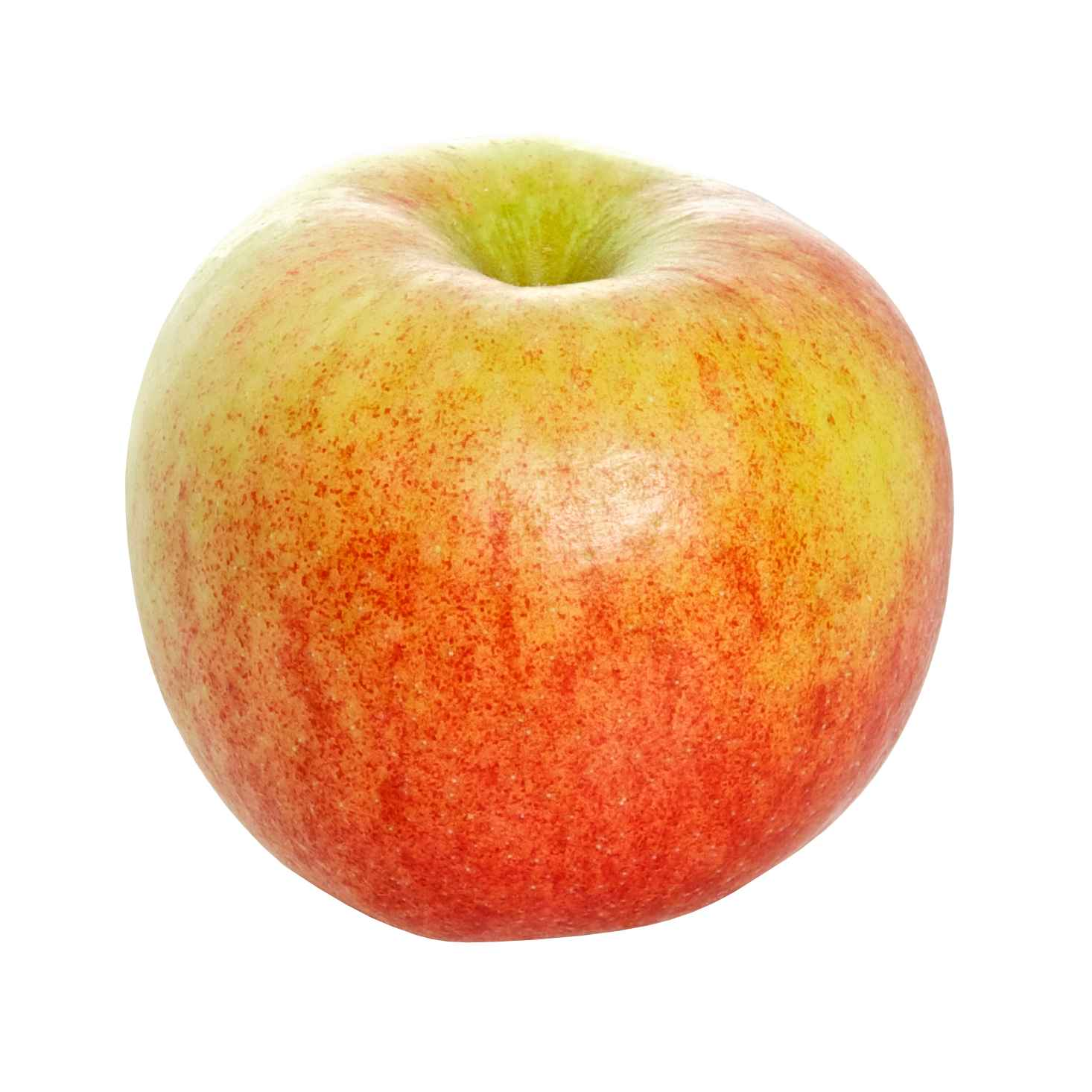 Produktbild på Äppleträd 'Rubinola'
