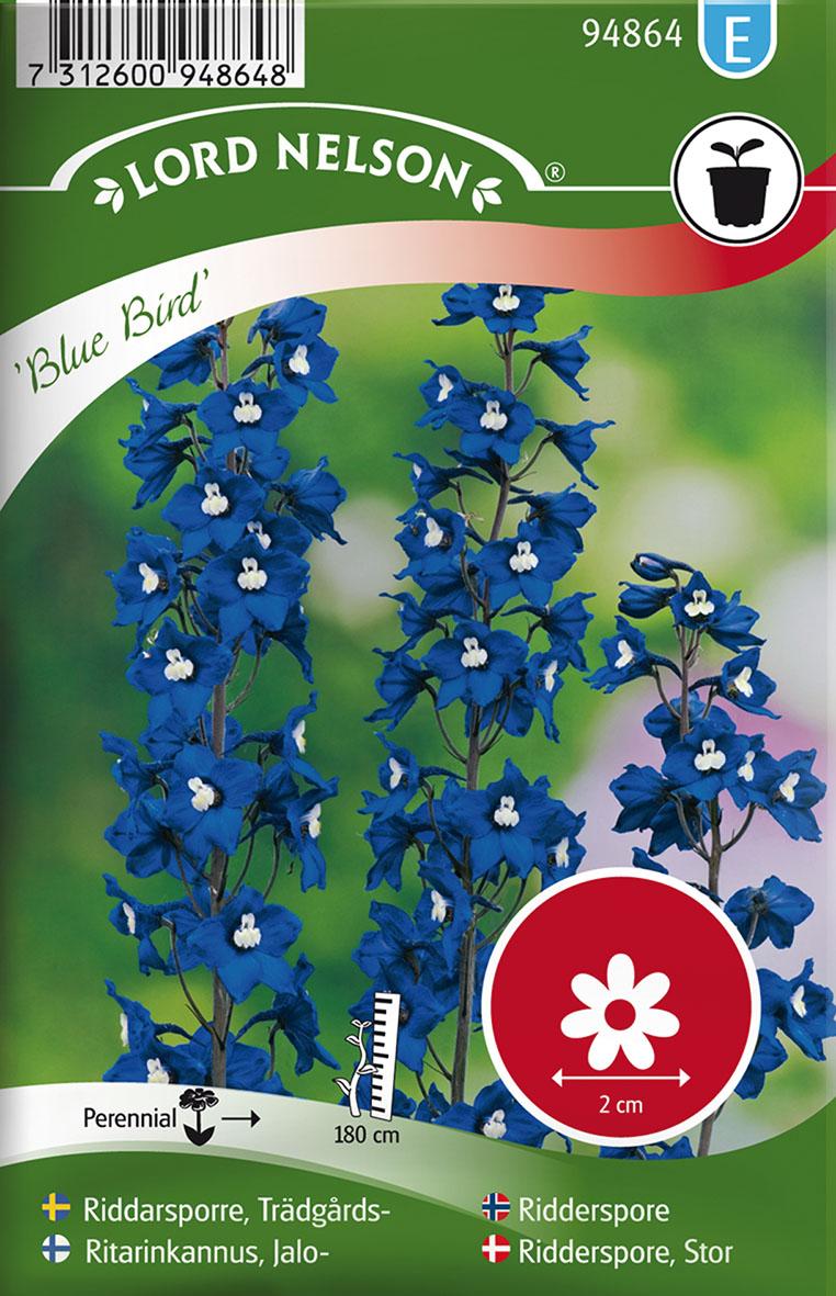 Produktbild på Trädgårdsriddarsporre 'Blue Bird'