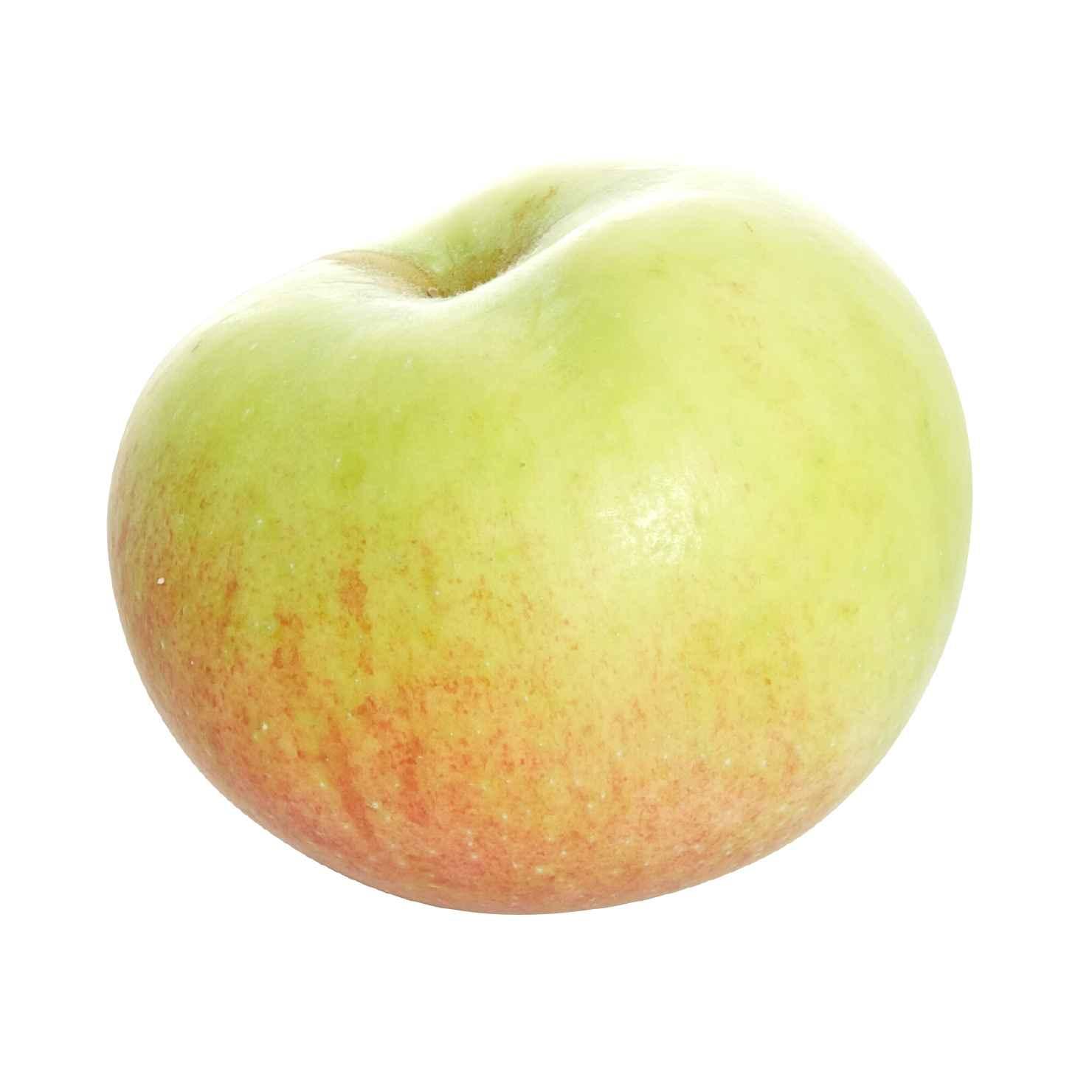 Produktbild på Äppleträd 'Fredrik'