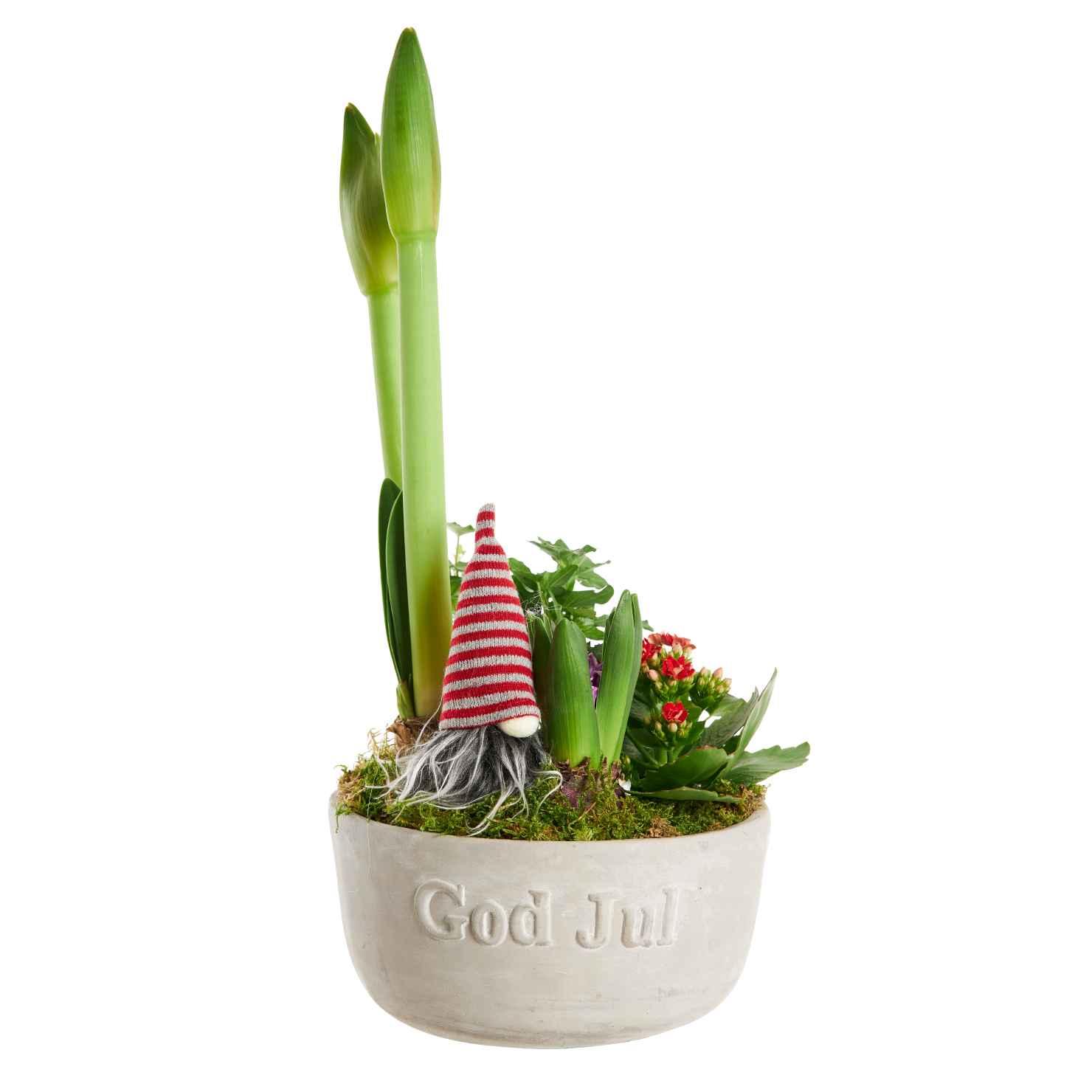 Produktbild på Julgrupp 'God Jul'