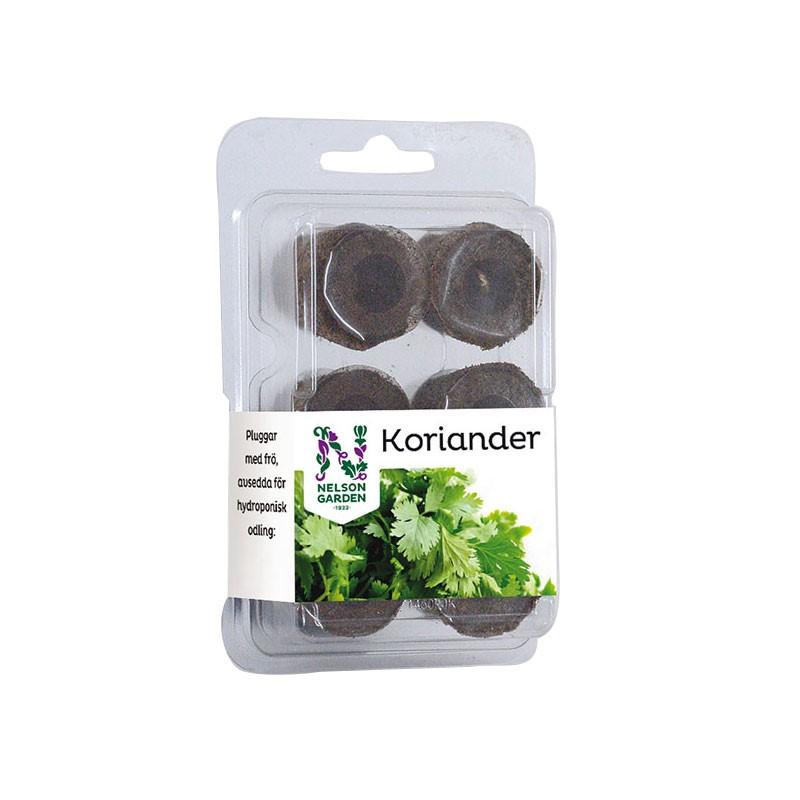 Produktbild på Odlingsplugg med Koriander 'Marino'