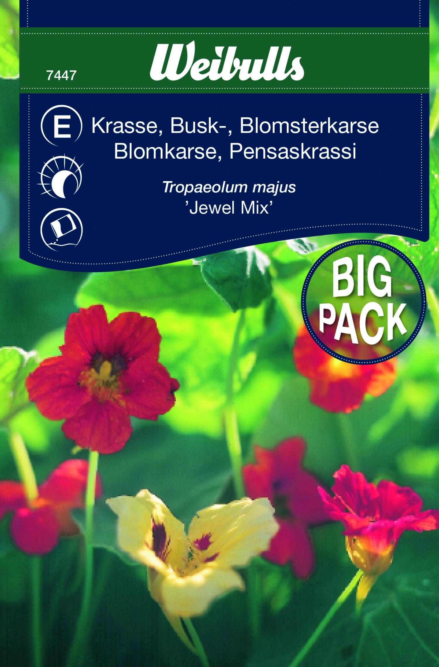 Produktbild på Buskkrasse 'Jewel mix'