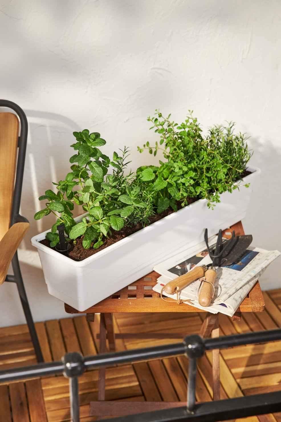 Produktbild 2 på Balkonglåda långtidsbevattning