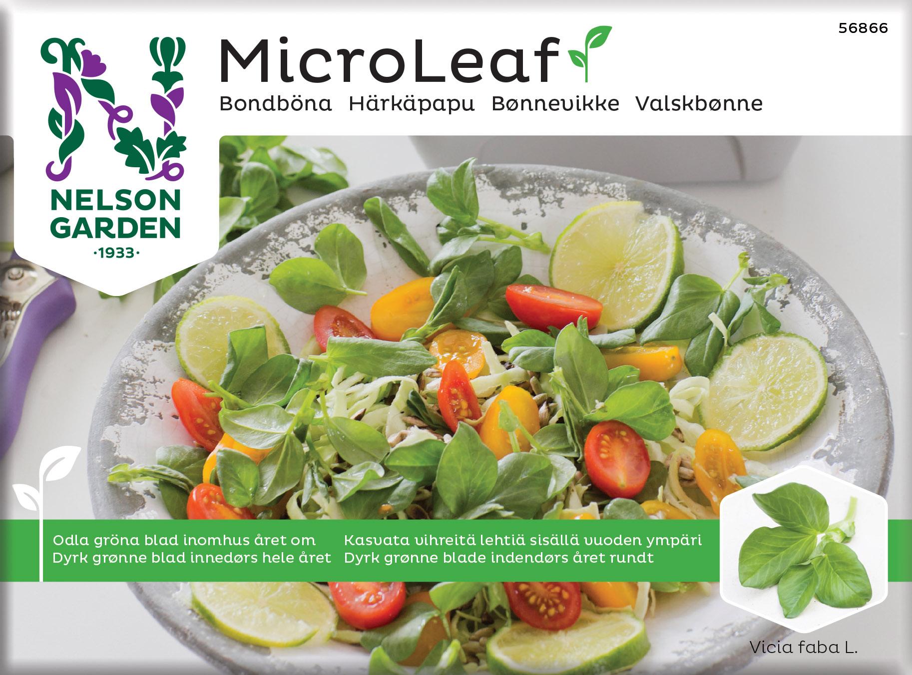 Produktbild på Micro Leaf Bondböna